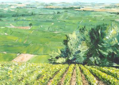 vue de Volnay